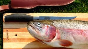 Grundausrpüstung für die Verabreitung des Küchenfisches.
